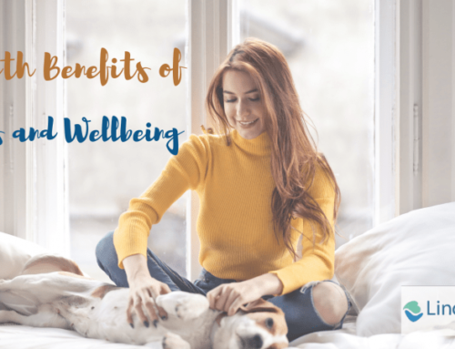 Health Benefits of Pets and Wellbeing